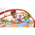 Tiny Love Hrací deka s hrazdou Gymini Move&Play